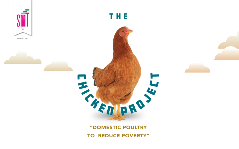 The chicken project